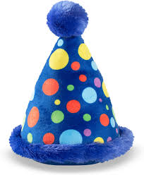 PARTY HAT TOY LARGE
