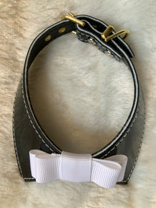 Mirage Johnny Dog Collar Black