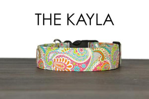 SO FETCH DOG COLLAR THE KAYLA BRIGHT RAINBOW