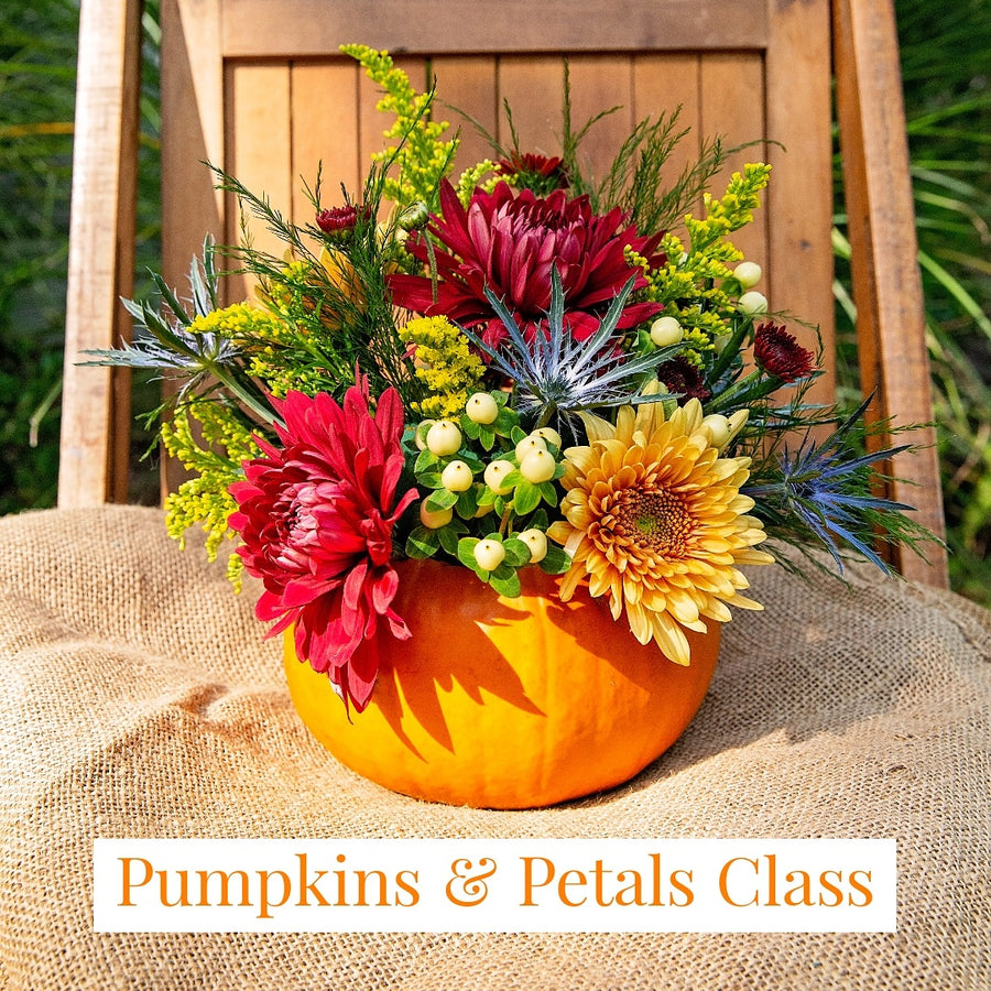 Ticket for 2: Daisy Jane's Pumpkins & Petals Class