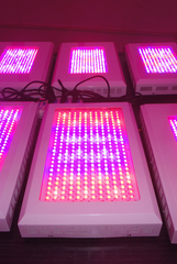 LED plant lights