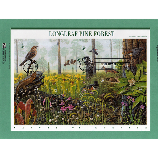Carnivorous Plant Stamps - Longleaf Pine Forest