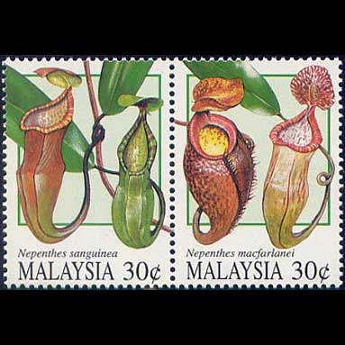Carnivorous Plant Stamps - Malaysia