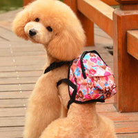 Backpack for Dogs and Cats