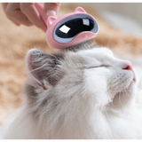 Cat Shaped Cat Hair Removing Brush
