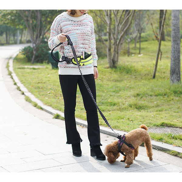 Hands Free Dog Lead / Dog Walking Leash