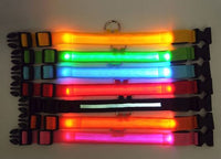 LED Light Pet Dog Safety Collar - Small