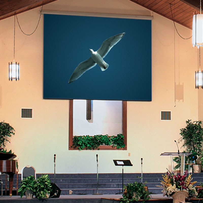 Draper Targa Electric Projection Screen