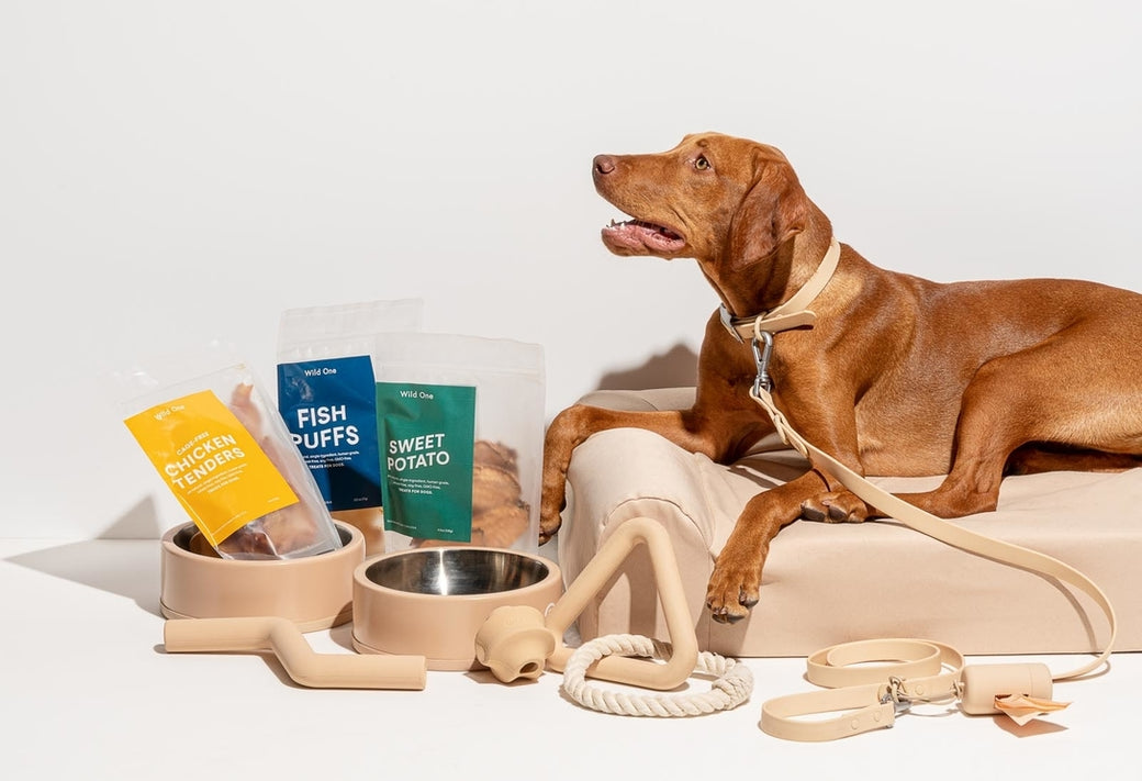 Wild One Starter Kit: The One-Stop Shop for All Your New Dog Gear