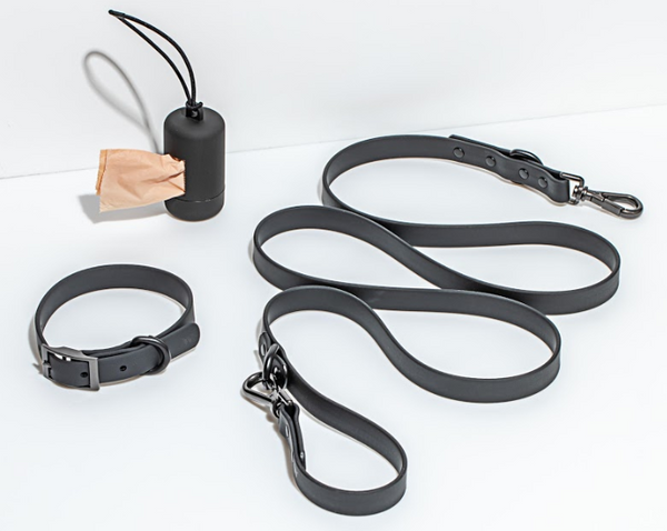 Wild One Walk Kit in Black Collar