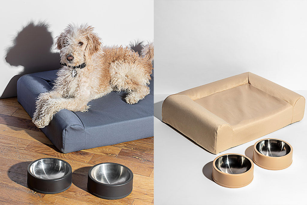 Wild One Dog Bed and Bowl Set