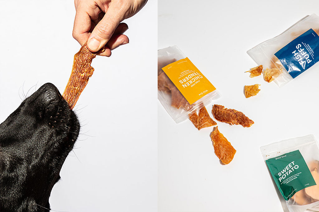 Wild One Single-Ingredient Dog Treats