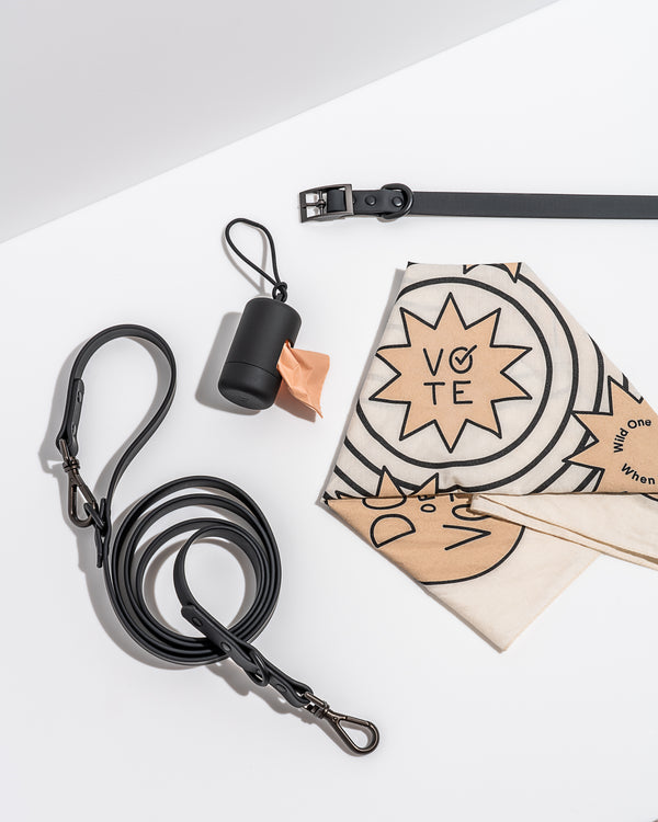 Limited Edition Vote Walk Kit by Wild One