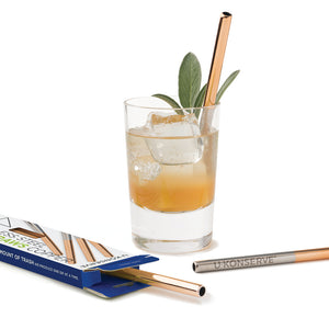 Stainless Steel Mini Straws (Set of 4)