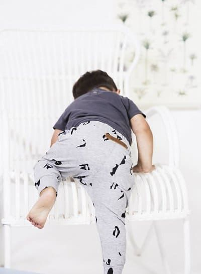 Little Indians-Pantalón algodón animal print grey - Desuniformados