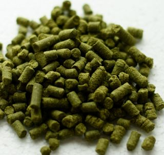 Apollo (US) Hop Pellets.
