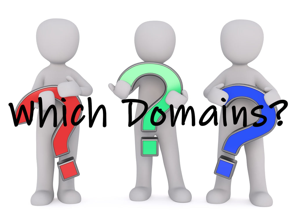 Which Domains Should I Choose? Pt. I