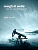2016 Marginal Well Report