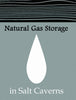 Natural Gas Storage in Salt Caverns (1998)