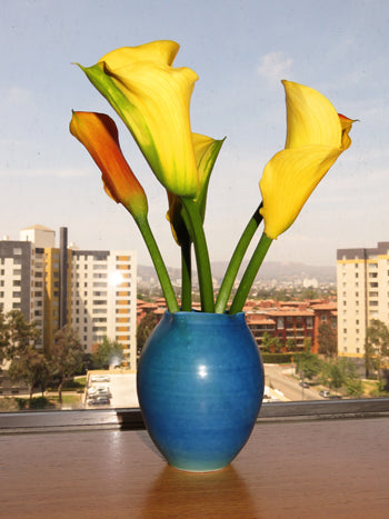 A Chad Luberger vase purchased by  the author, on display in his Los Angeles home.(photo: Norman Kolpas)