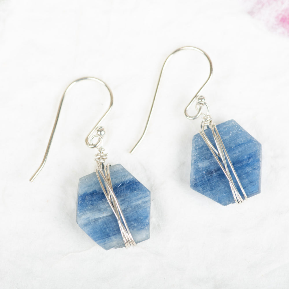 Raw Kyanite Earrings