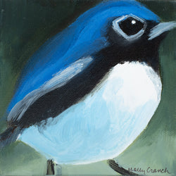 """Deflect"" Black Throated Blue Warbler"