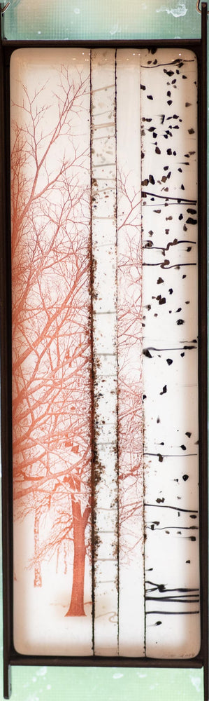 Clear & White Birch Trees Window Panel