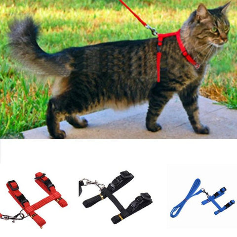 Cat Adjustable Nylon Harness And Leash - Pets Universe shop