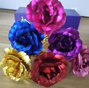 24K Gold Plated Rose (5 COLORS)