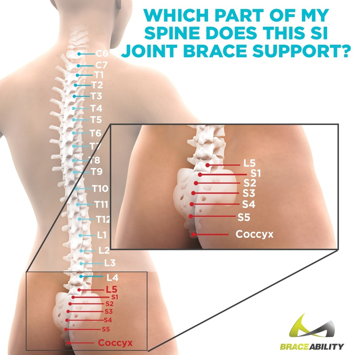 area of your back that the sacroiliac joint pain brace treats