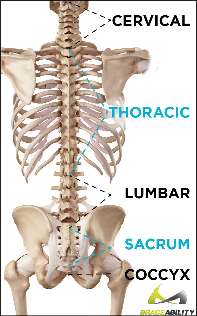 where your tailbone is located and what would cause coccyx pain
