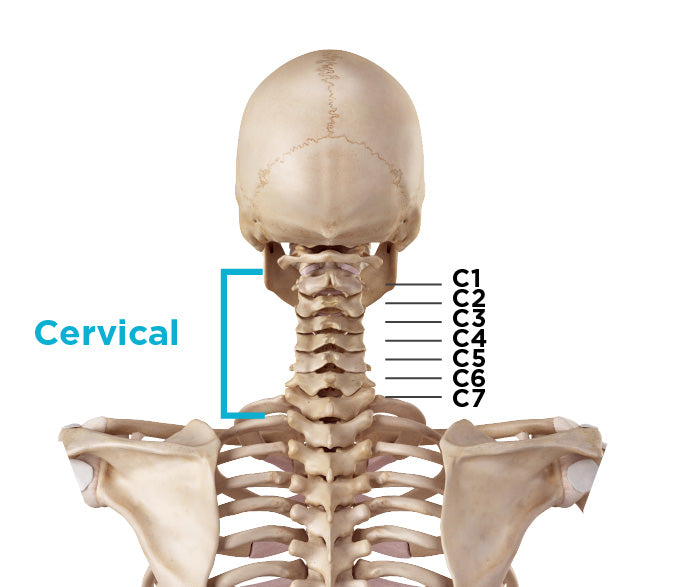 do i have a bulging disc back cervical bulged disc symptoms
