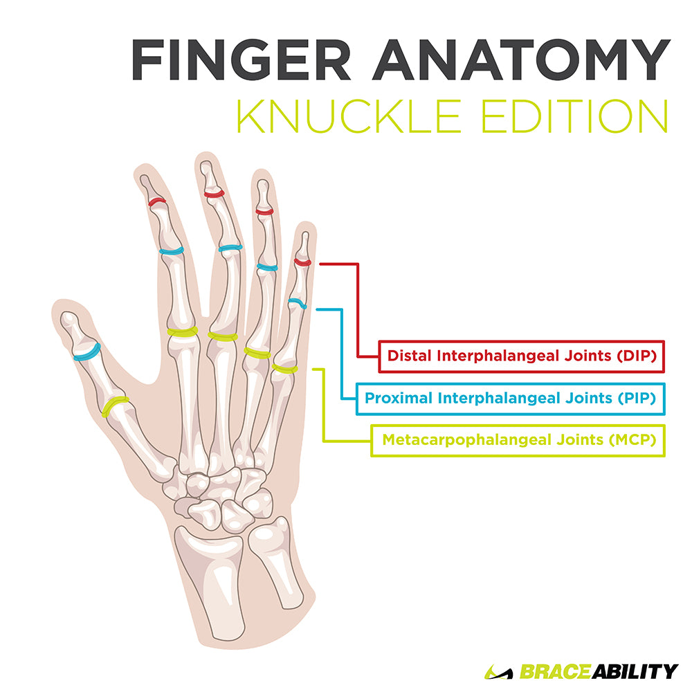 learn more about finger joint anatomy, pain, and swelling