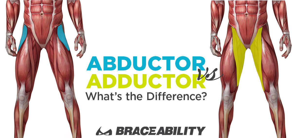 infographic showing the difference between hip abduction vs adduction