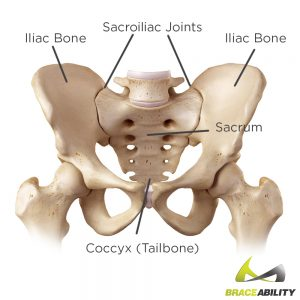 Use this anatomy chart to explain the location of sacroiliac joint pain dysfunction or tailbone pain