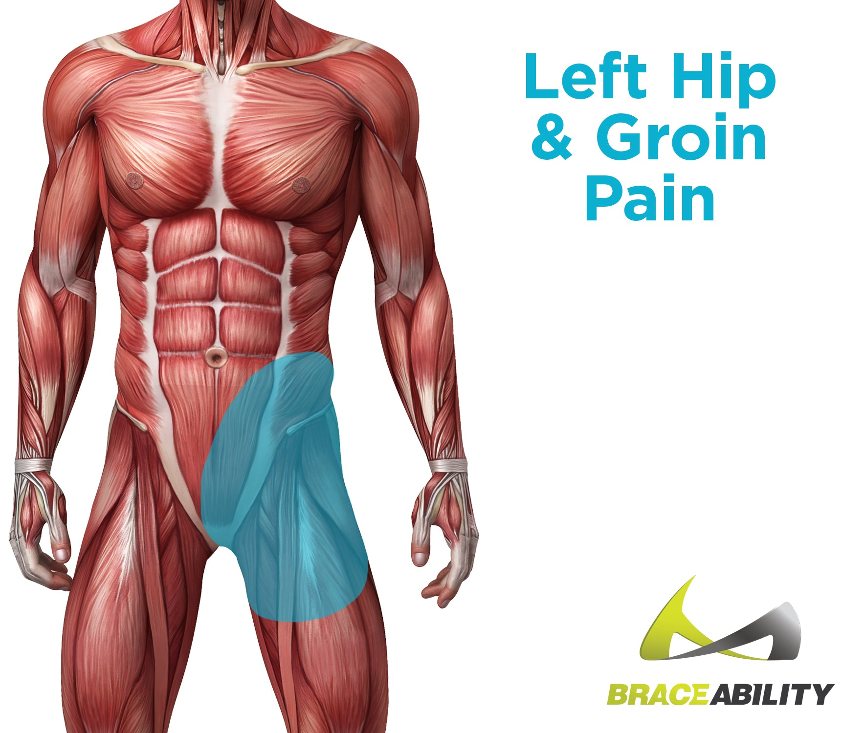 reasons for left hip and groin pain