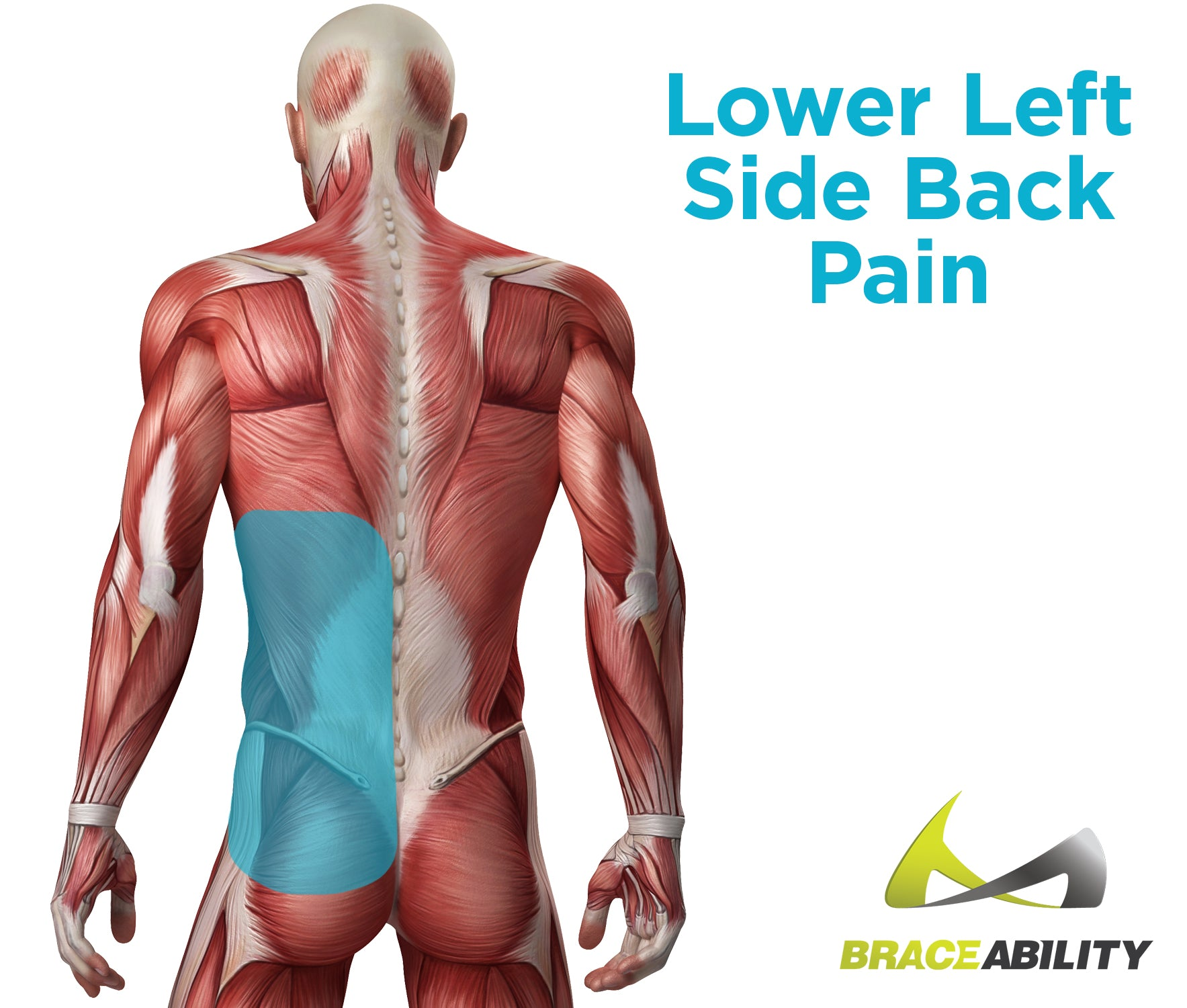Symptoms of lower left side back and glute pain