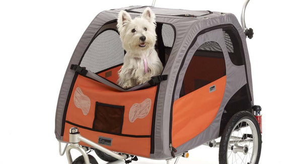bicycle carrier for dogs or other pets that has a screen for protection