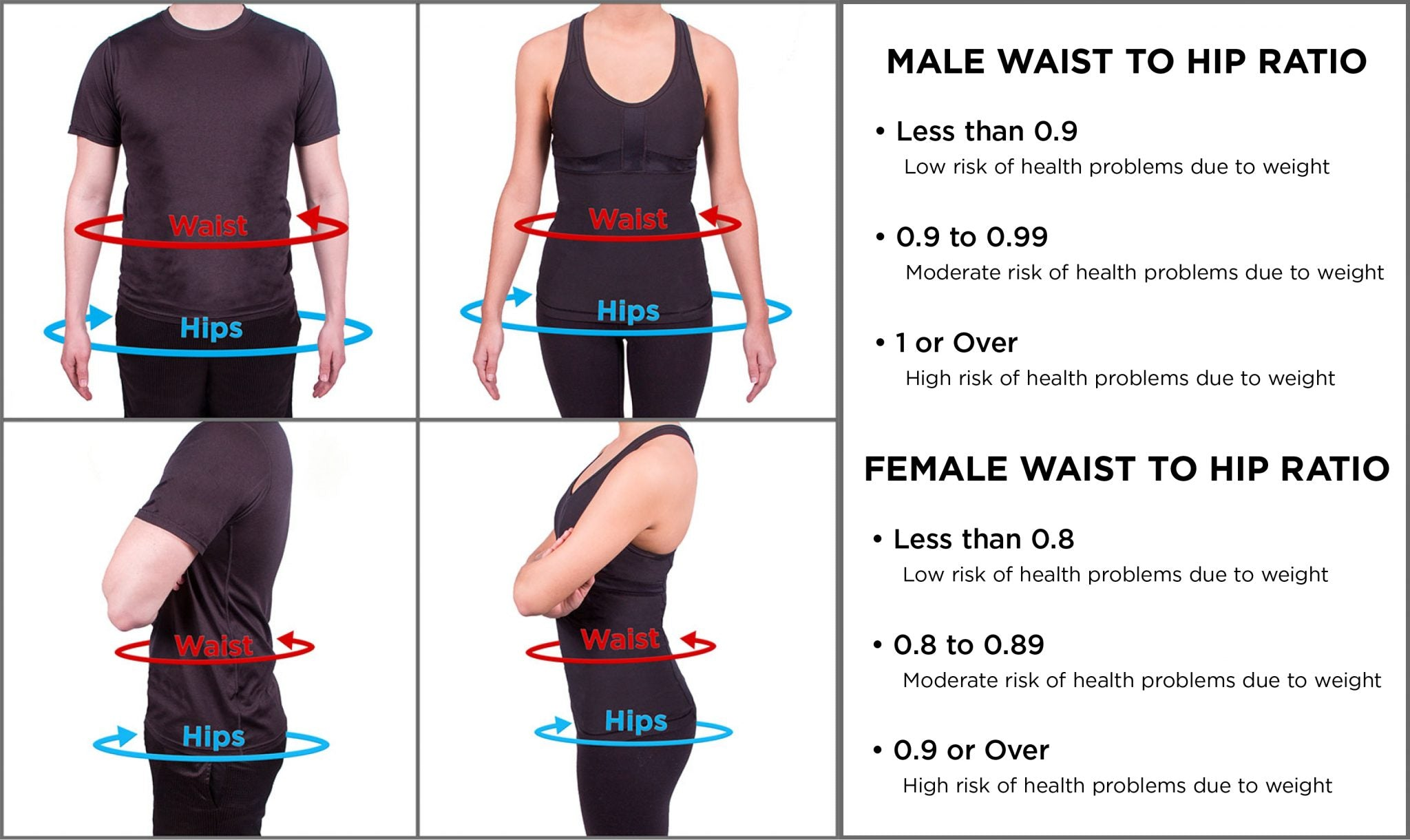 where to measure yourself for hip to waist ratio on the BMI chart
