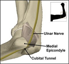 sources of pain in the anatomy of the elbow and ulnar nerves