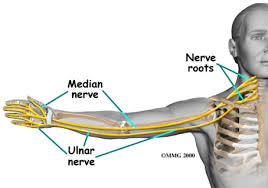 Ulnar Nerve Pain in Your Elbow or Wrist | Causes, Symptoms & Treatment