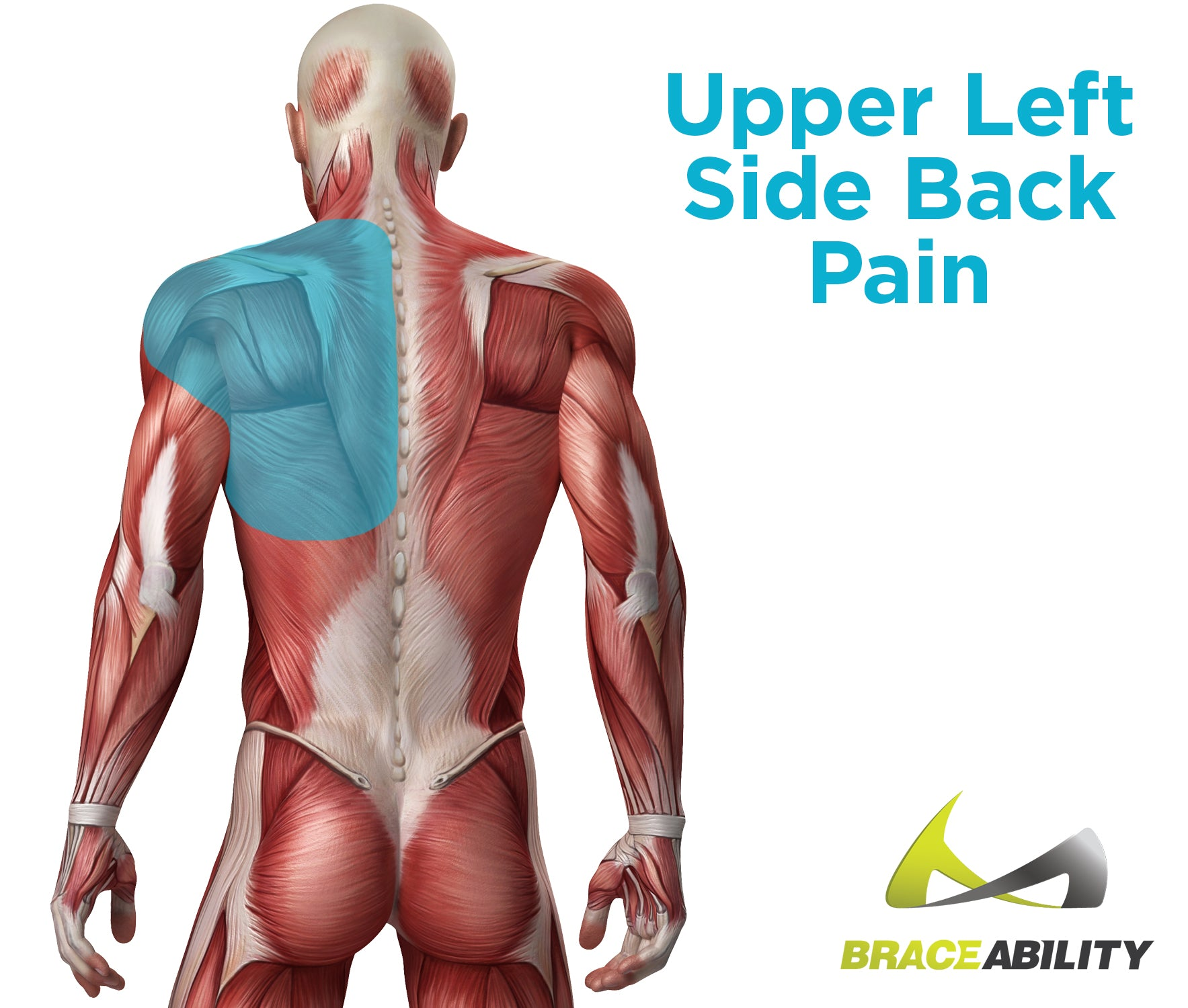 Causes of upper left side back and shoulder pain