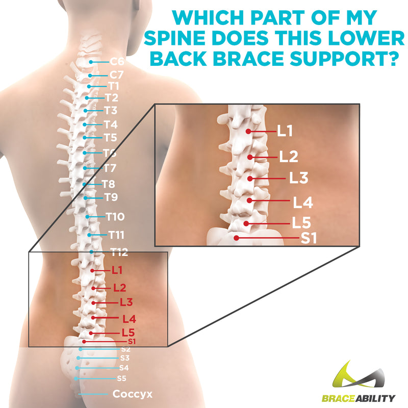 Adjustable Lower Back Spine Pain Corset Brace For Lumbar Support
