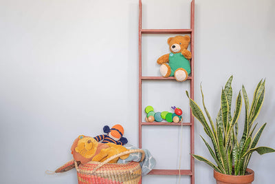 Wooden blanket ladder decorative idea