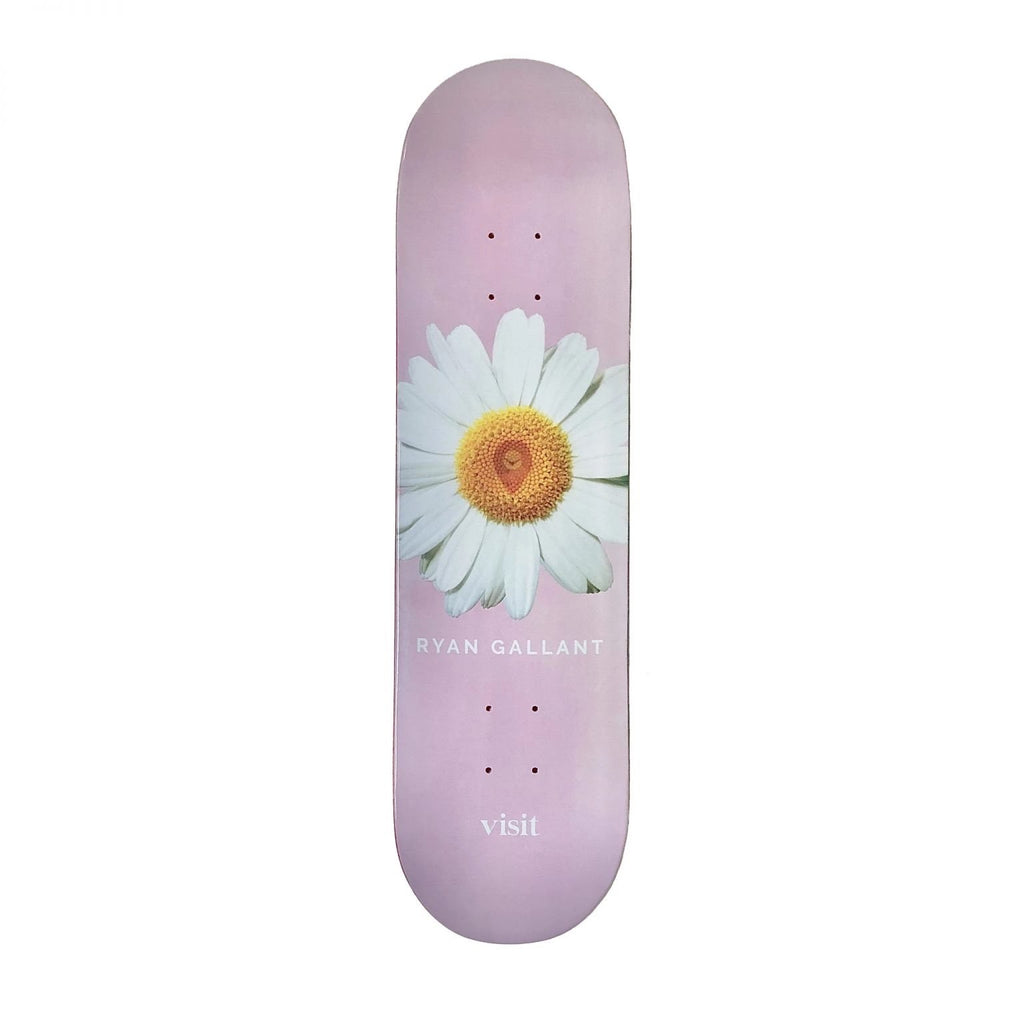 Visit - Gallant Daisy Deck 8.5""