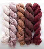 Manos del Uruguay, 4ply, silk blend Fino mini skein set. Set 5 Eleanor