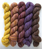 Manos del Uruguay, 4ply, silk blend Fino mini skein set. Set 9 Irene