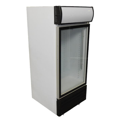 Bottle Coolers 265L 2 Door Hinged EH550
