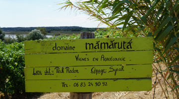 A Visit with Marc Castan at Domaine Mamaruta