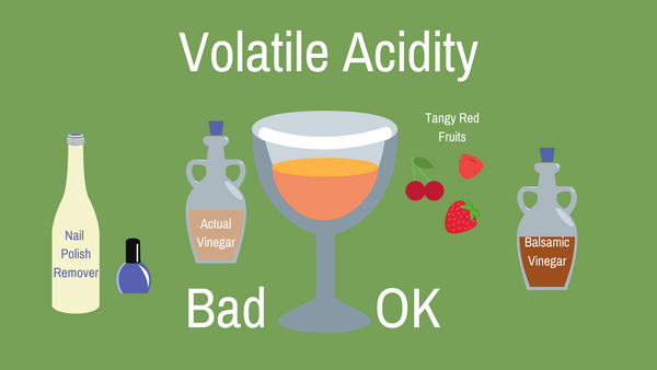 Volatile Acidity in Natural Wine Infographic